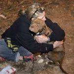 飼い主の元から盗まれ虐待された犬…1年後痛々しい姿で発見された犬に驚くべき事実が…【世界が感動!涙と感動エピソード】