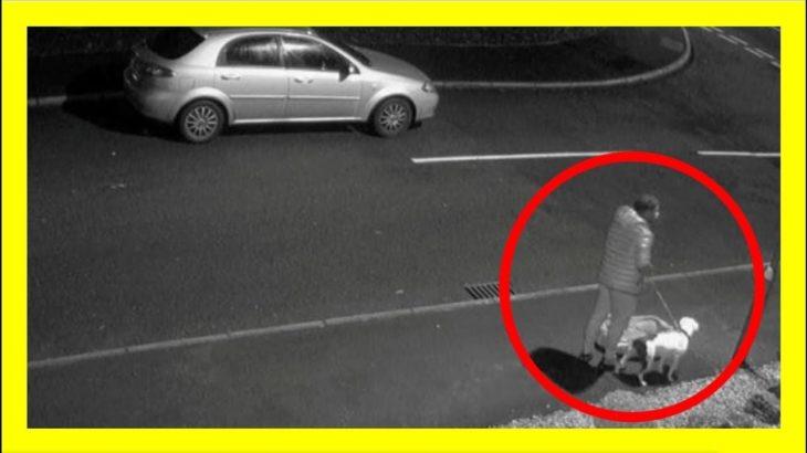 子犬を路上に捨てる飼い主の男性 「僕を置いていかないで!」と必死にすがる犬の姿に…
