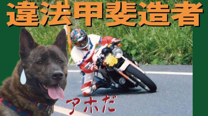 【甲斐犬】犬に自転車を引かせる問題